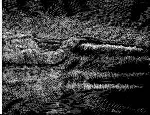 scratchboard wave