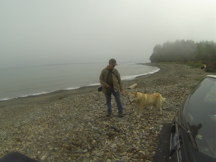 Josey Paul at the same beach. Still no waves. He walks his dogs here daily, but couldn't give me a report on recent wave activity.  He said the area was once bigger than Port Angeles, center for logging, clay mining, bars, prostitutes, you know. None of them probably noticed the surf either.