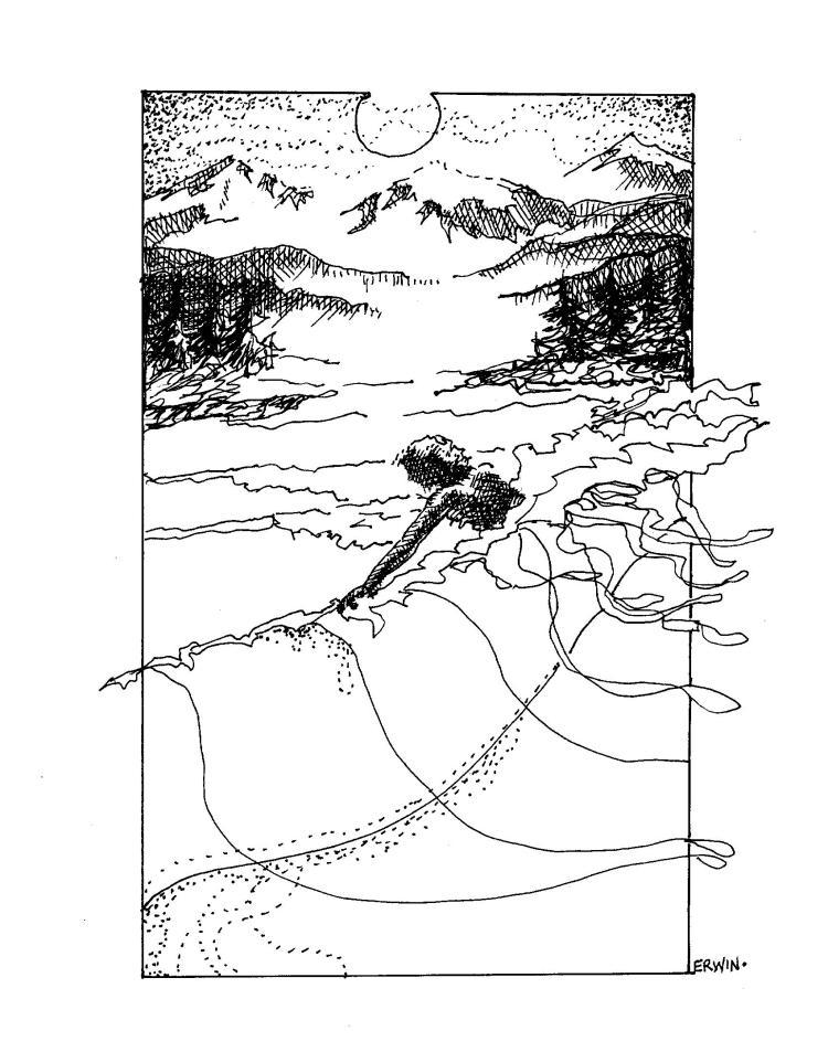 Image (19)