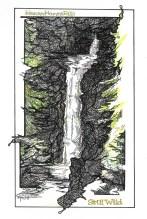 Image (58)