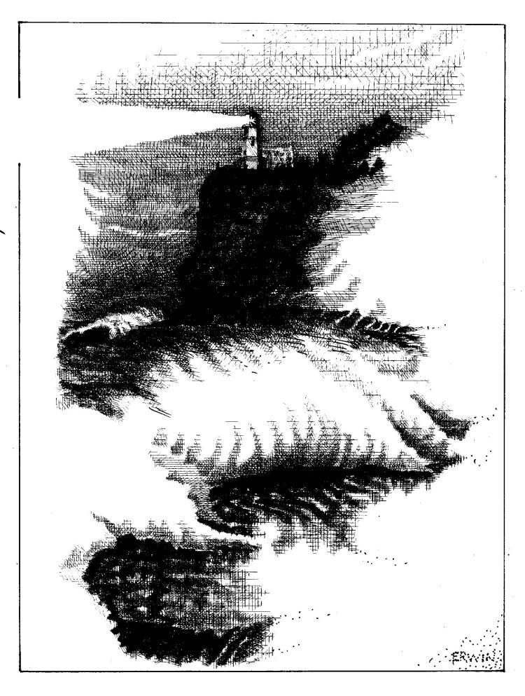 Image (70)