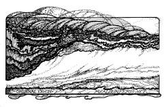 Image (94)